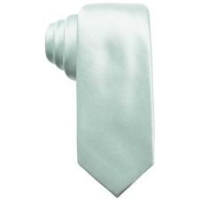 Alfani Men's Solid Silk Slim Tie (Green)