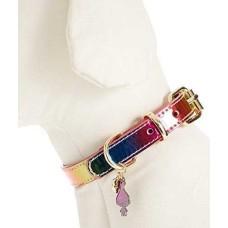 Betsey Johnson 9.5-11.5-in xox Trolls Dog Collar (Rainbow)