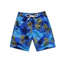 Fashionable Summer Swim Trunks for Men, Quick Dry Swim Shorts for Men, Swimwear, Bathing Suits, Swim Shorts with Various Colors & Designs, Quick Dry Nylon Shorts